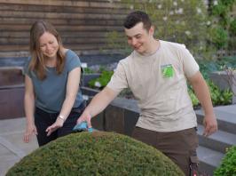Fachgerechter Baumschnitt oder Baumfällungen